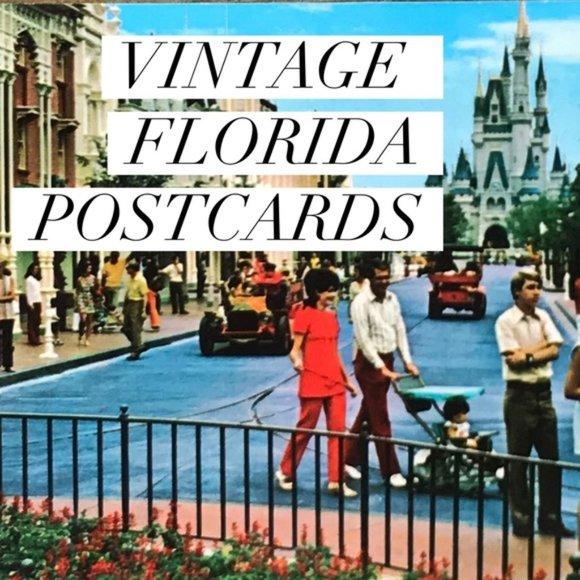 Vintage Other - Vintage Florida USA Souvenir Postcards